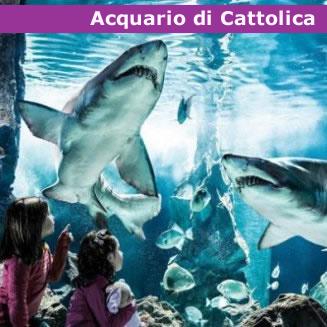 offerte-hotel-parchi-acquario-cattolica